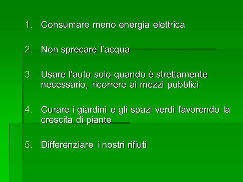 1.Consumare meno energia elettrica 2.Non sprecare lacqua 3.Usare lauto solo quando è strettamente necessario, ricorrere ai mezzi pubblici 4.Curare i g
