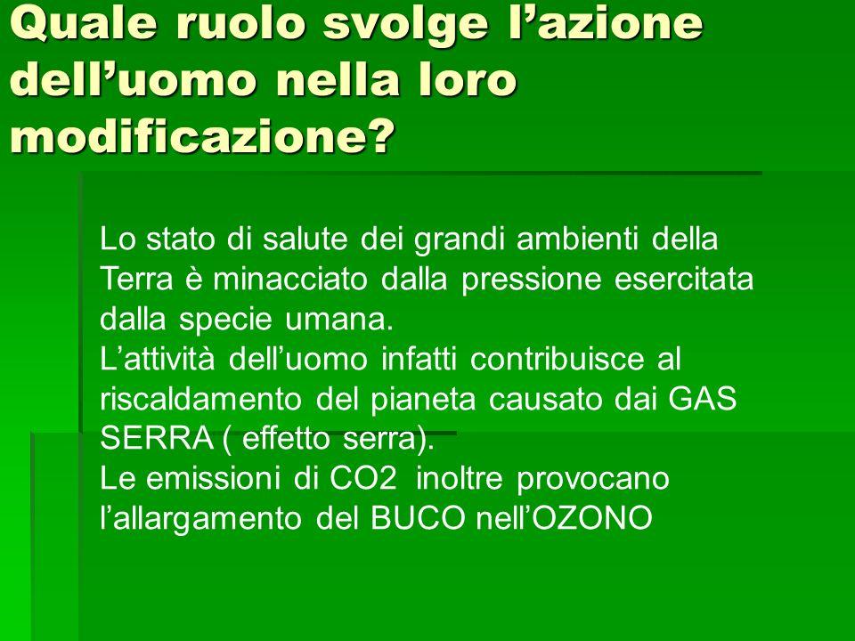 Quale ruolo svolge lazione delluomo nella loro modificazione? Lo stato di salute dei grandi ambienti della Terra è minacciato dalla pressione esercita