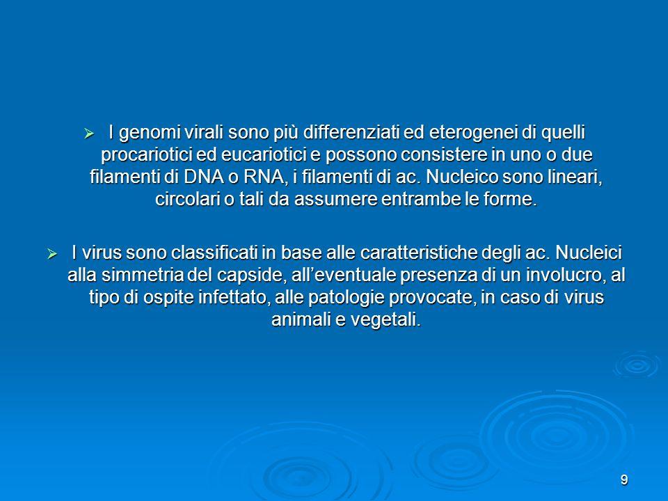 9 I genomi virali sono più differenziati ed eterogenei di quelli procariotici ed eucariotici e possono consistere in uno o due filamenti di DNA o RNA,