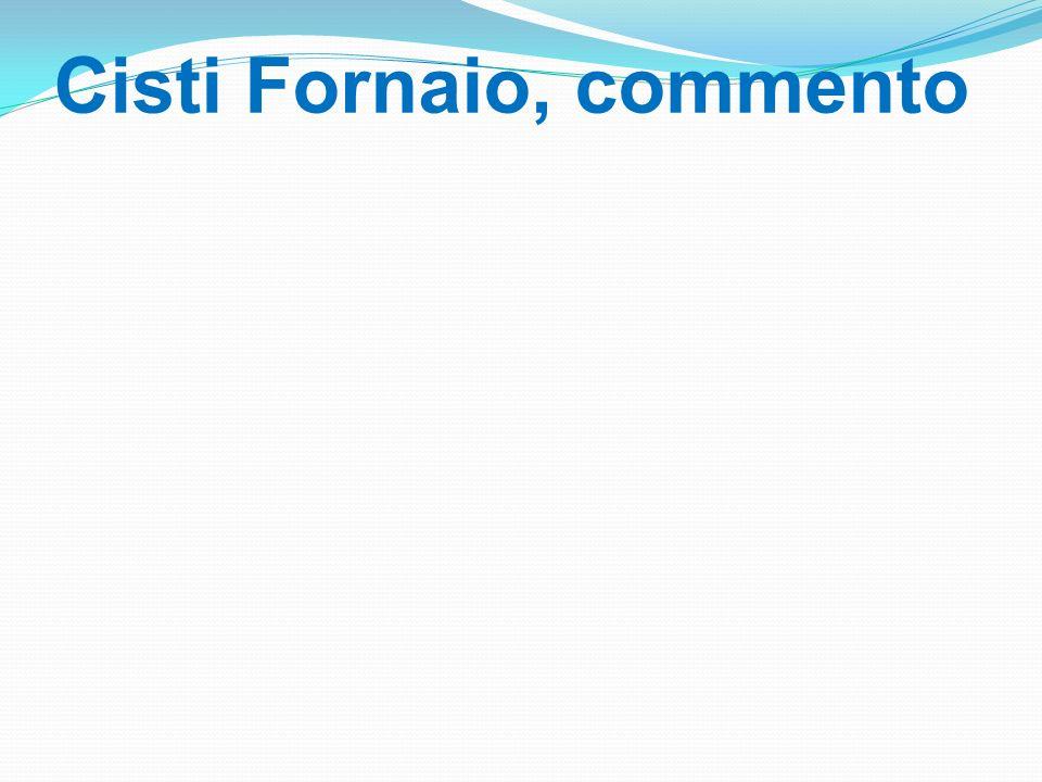 Cisti Fornaio, commento