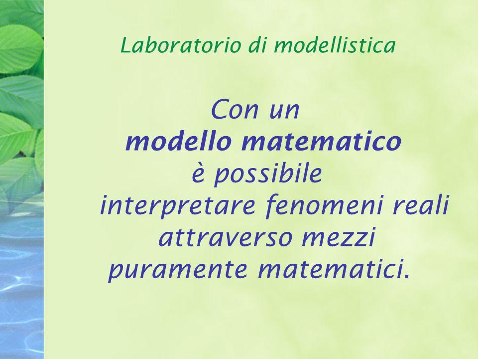 Laboratorio di modellistica Con un modello matematico è possibile interpretare fenomeni reali attraverso mezzi puramente matematici.