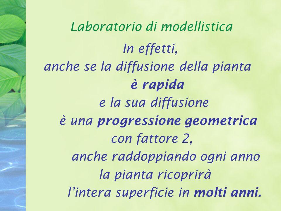 Laboratorio di modellistica In effetti, anche se la diffusione della pianta è rapida e la sua diffusione è una progressione geometrica con fattore 2, anche raddoppiando ogni anno la pianta ricoprirà lintera superficie in molti anni.