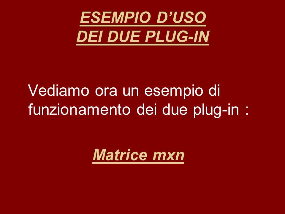 ESEMPIO DUSO DEI DUE PLUG-IN Vediamo ora un esempio di funzionamento dei due plug-in : Matrice mxn