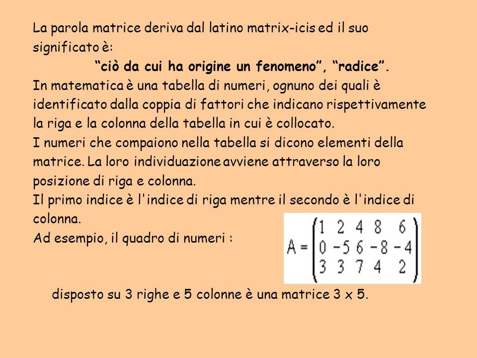 La parola matrice deriva dal latino matrix-icis ed il suo significato è: ciò da cui ha origine un fenomeno, radice. In matematica è una tabella di num