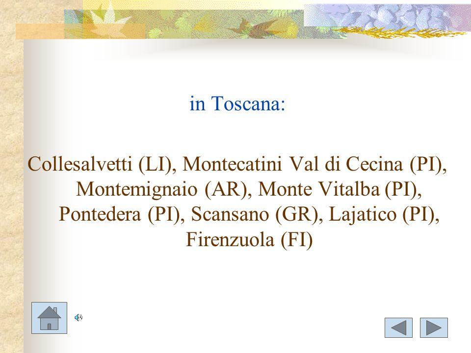 in Toscana: Collesalvetti (LI), Montecatini Val di Cecina (PI), Montemignaio (AR), Monte Vitalba (PI), Pontedera (PI), Scansano (GR), Lajatico (PI), F