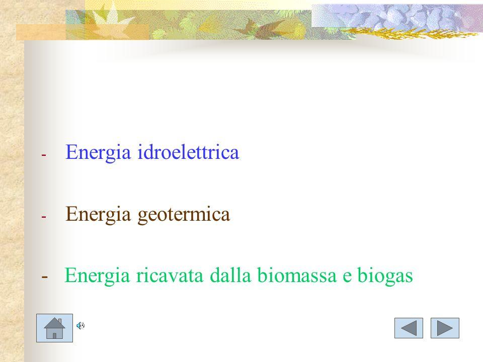 - Energia idroelettrica - Energia geotermica - Energia ricavata dalla biomassa e biogas