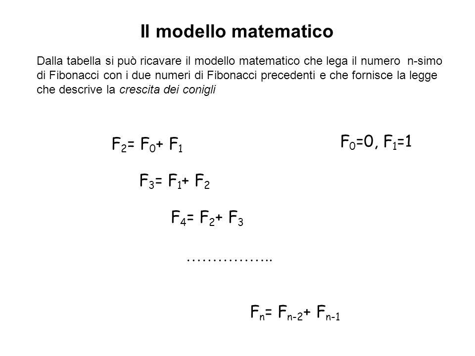 Il modello matematico F 2 = F 0 + F 1 F 3 = F 1 + F 2 F 4 = F 2 + F 3 F n = F n-2 + F n-1 …………….. F 0 =0, F 1 =1 Dalla tabella si può ricavare il mode