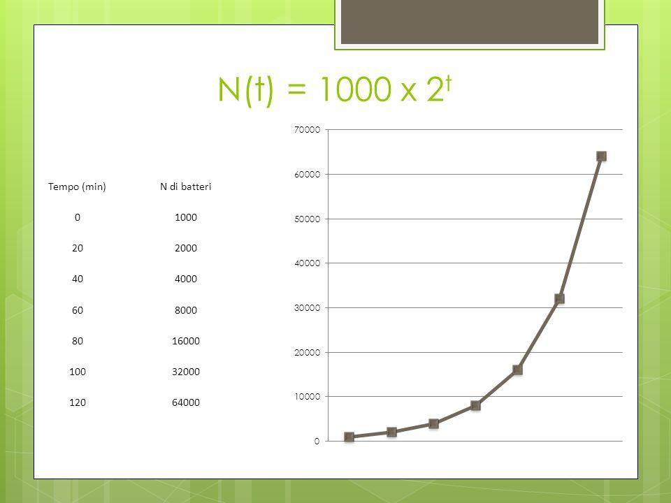 N(t) = 1000 x 2 t Tempo (min)N di batteri 01000 202000 404000 608000 8016000 10032000 12064000