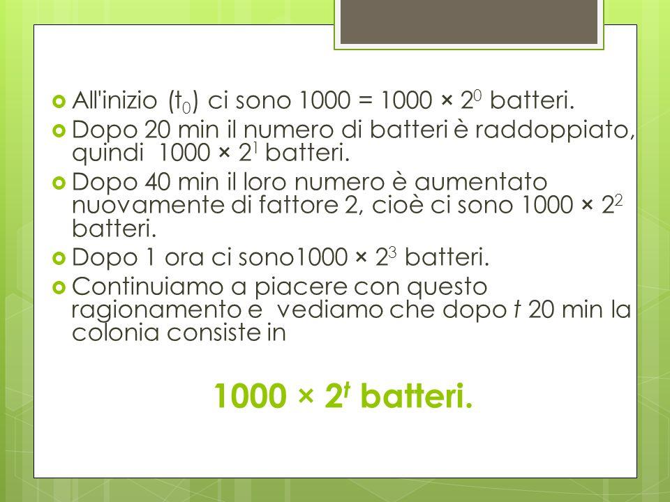 All'inizio (t 0 ) ci sono 1000 = 1000 × 2 0 batteri. Dopo 20 min il numero di batteri è raddoppiato, quindi 1000 × 2 1 batteri. Dopo 40 min il loro nu