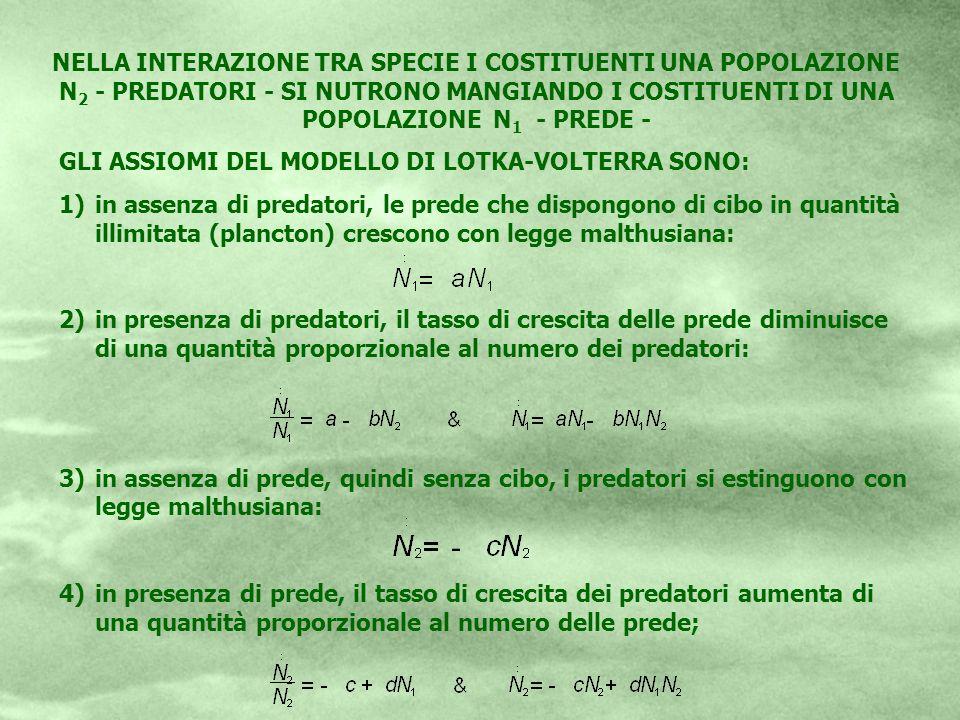 NELLA INTERAZIONE TRA SPECIE I COSTITUENTI UNA POPOLAZIONE N 2 - PREDATORI - SI NUTRONO MANGIANDO I COSTITUENTI DI UNA POPOLAZIONE N 1 - PREDE - GLI A