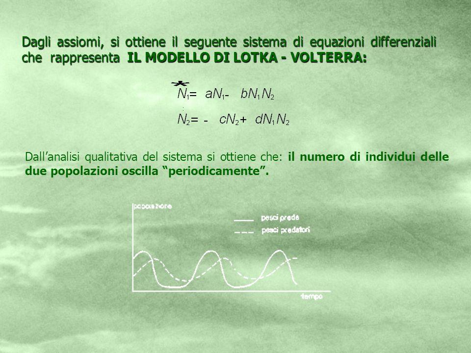 Dagli assiomi, si ottiene il seguente sistema di equazioni differenziali che rappresenta IL MODELLO DI LOTKA - VOLTERRA: Dallanalisi qualitativa del s