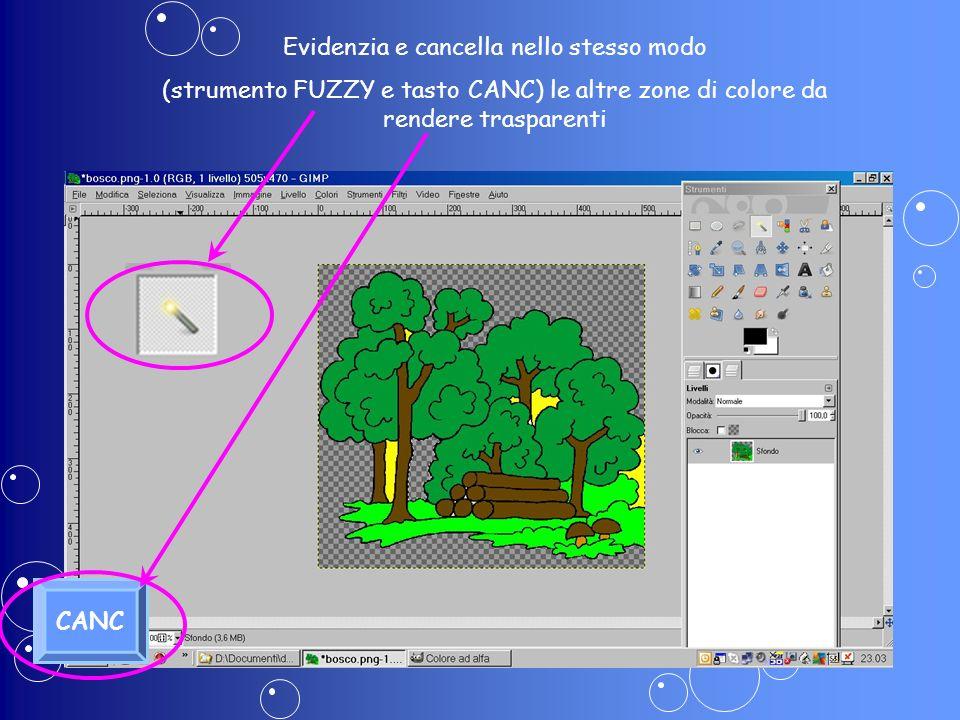Evidenzia e cancella nello stesso modo (strumento FUZZY e tasto CANC) le altre zone di colore da rendere trasparenti CANC