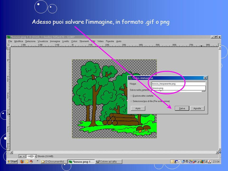 Adesso puoi salvare limmagine, in formato.gif o png