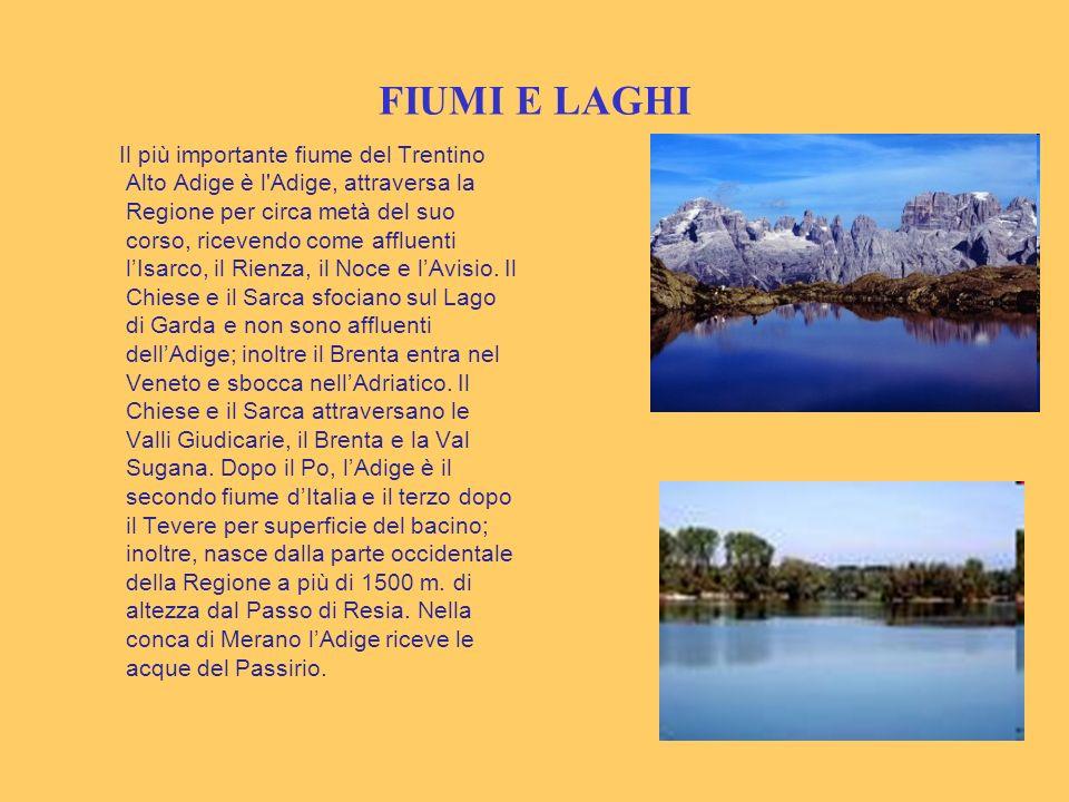 FIUMI E LAGHI Il più importante fiume del Trentino Alto Adige è l'Adige, attraversa la Regione per circa metà del suo corso, ricevendo come affluenti