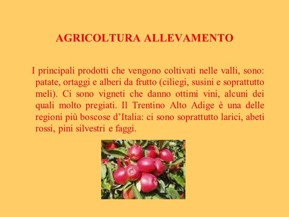 AGRICOLTURA ALLEVAMENTO I principali prodotti che vengono coltivati nelle valli, sono: patate, ortaggi e alberi da frutto (ciliegi, susini e soprattut