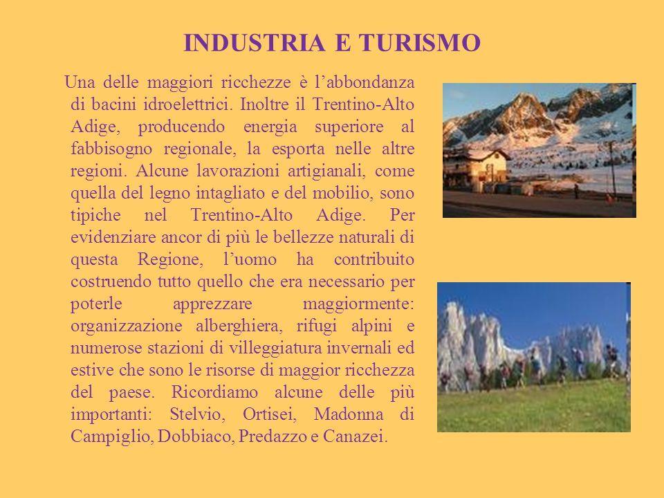 INDUSTRIA E TURISMO Una delle maggiori ricchezze è labbondanza di bacini idroelettrici. Inoltre il Trentino-Alto Adige, producendo energia superiore a