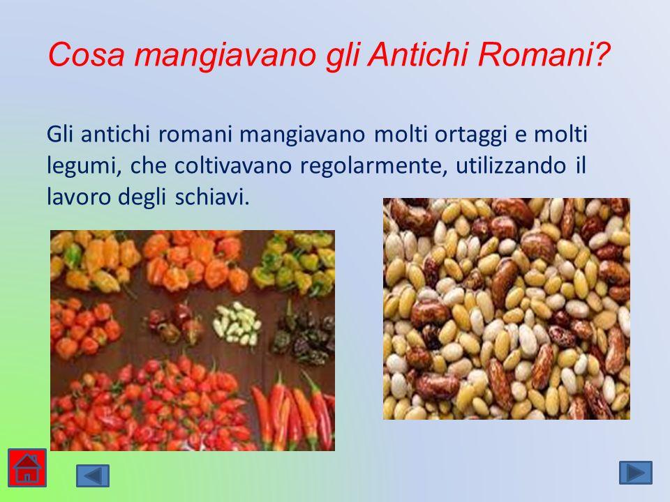 Cosa mangiavano gli Antichi Romani? Gli antichi romani mangiavano molti ortaggi e molti legumi, che coltivavano regolarmente, utilizzando il lavoro de