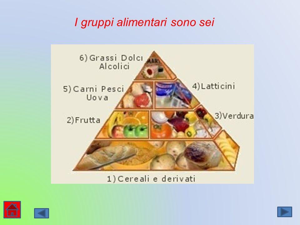 I gruppi alimentari sono sei