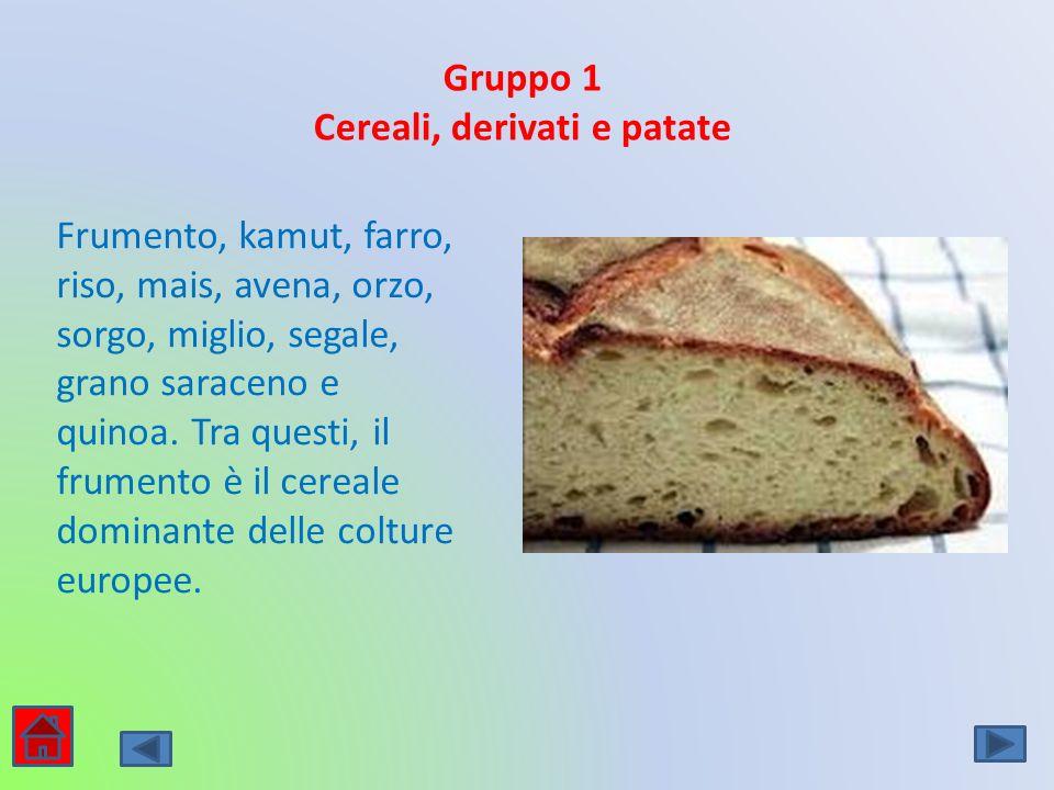 Gruppo 1 Cereali, derivati e patate Frumento, kamut, farro, riso, mais, avena, orzo, sorgo, miglio, segale, grano saraceno e quinoa. Tra questi, il fr