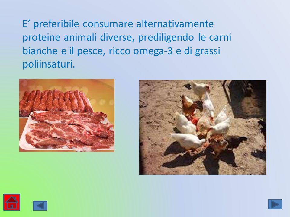 E preferibile consumare alternativamente proteine animali diverse, prediligendo le carni bianche e il pesce, ricco omega-3 e di grassi poliinsaturi.