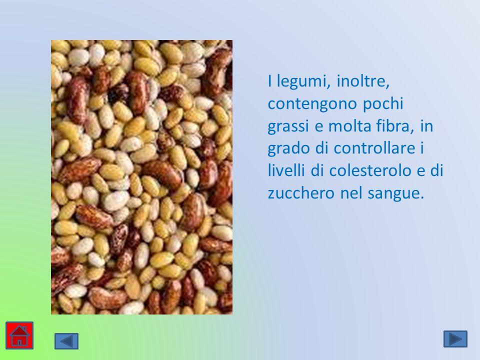 I legumi, inoltre, contengono pochi grassi e molta fibra, in grado di controllare i livelli di colesterolo e di zucchero nel sangue.