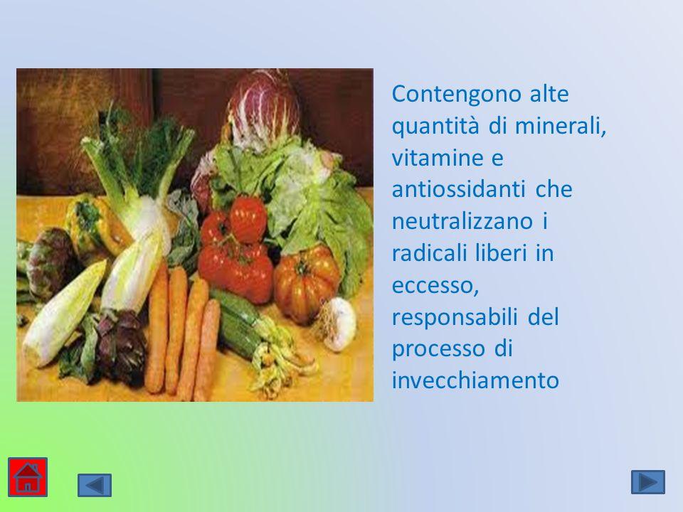 Contengono alte quantità di minerali, vitamine e antiossidanti che neutralizzano i radicali liberi in eccesso, responsabili del processo di invecchiam