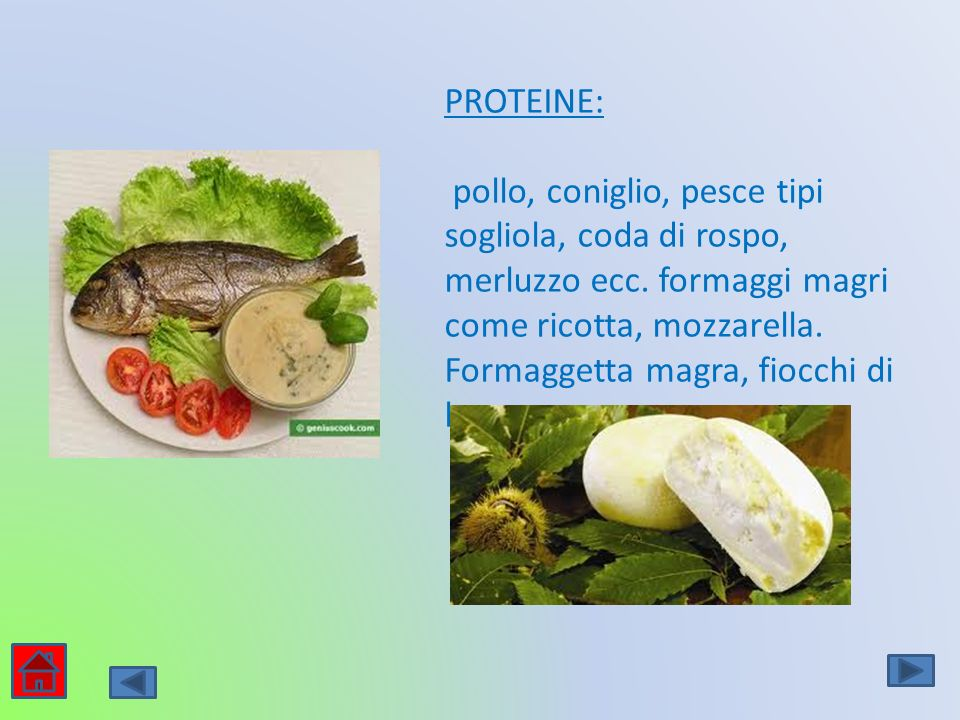 PROTEINE: pollo, coniglio, pesce tipi sogliola, coda di rospo, merluzzo ecc. formaggi magri come ricotta, mozzarella. Formaggetta magra, fiocchi di la