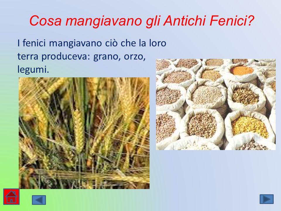 Cosa mangiavano gli Antichi Fenici? I fenici mangiavano ciò che la loro terra produceva: grano, orzo, legumi.