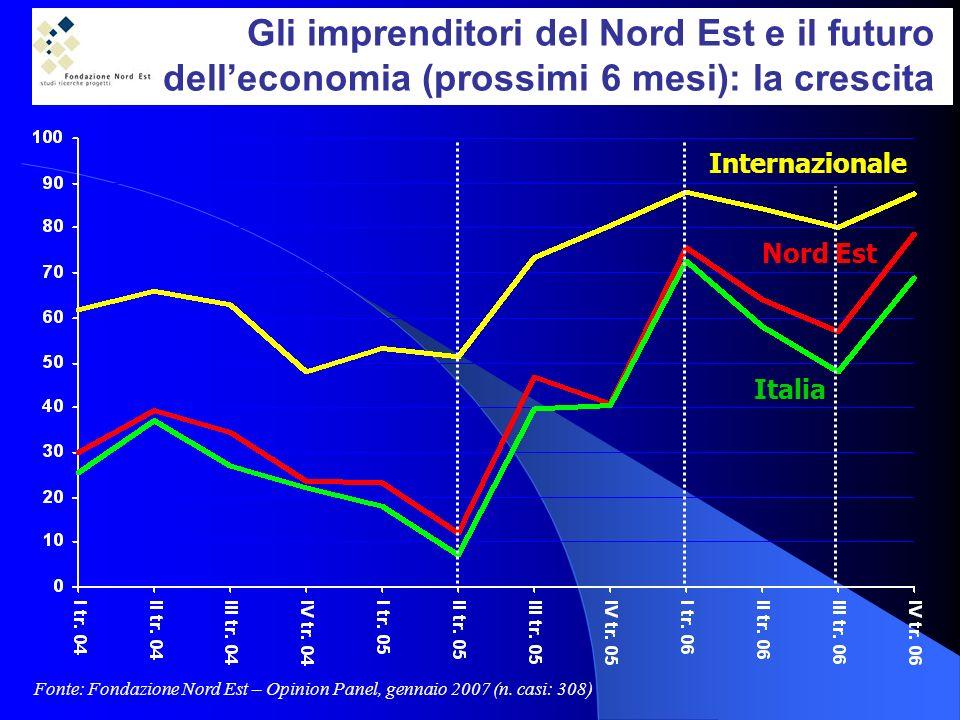 Gli imprenditori del Nord Est e il futuro delleconomia (prossimi 6 mesi): la crescita Fonte: Fondazione Nord Est – Opinion Panel, gennaio 2007 (n.