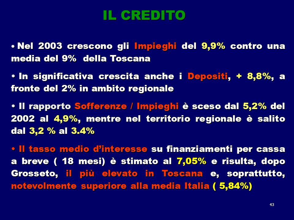 43 Nel 2003 crescono gli Impieghi del 9,9% contro una media del 9% della Toscana Nel 2003 crescono gli Impieghi del 9,9% contro una media del 9% della Toscana In significativa crescita anche i Depositi, + 8,8%, a fronte del 2% in ambito regionale In significativa crescita anche i Depositi, + 8,8%, a fronte del 2% in ambito regionale Il rapporto Sofferenze / Impieghi è sceso dal 5,2% del 2002 al 4,9%, mentre nel territorio regionale è salito dal 3,2 % al 3.4% Il rapporto Sofferenze / Impieghi è sceso dal 5,2% del 2002 al 4,9%, mentre nel territorio regionale è salito dal 3,2 % al 3.4% Il tasso medio dinteresse su finanziamenti per cassa a breve ( 18 mesi) è stimato al 7,05% e risulta, dopo Grosseto, il più elevato in Toscana e, soprattutto, notevolmente superiore alla media Italia ( 5,84%) Il tasso medio dinteresse su finanziamenti per cassa a breve ( 18 mesi) è stimato al 7,05% e risulta, dopo Grosseto, il più elevato in Toscana e, soprattutto, notevolmente superiore alla media Italia ( 5,84%) IL CREDITO