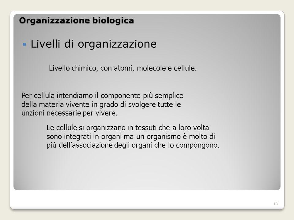 Organizzazione biologica Livelli di organizzazione Livello chimico, con atomi, molecole e cellule.