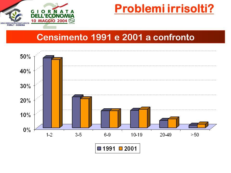 -6,9% 54,3% -8,2% 63,6% ManifatturieroCostruzioniCommercioServizi Problemi irrisolti? Censimento 1991 e 2001 a confronto