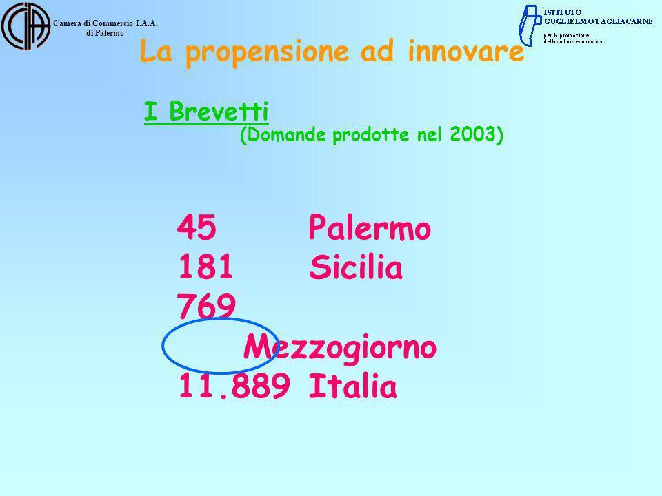 Camera di Commercio I.A.A. di Palermo La propensione ad innovare I Brevetti (Domande prodotte nel 2003) 45Palermo 181Sicilia 769 Mezzogiorno 11.889Ita