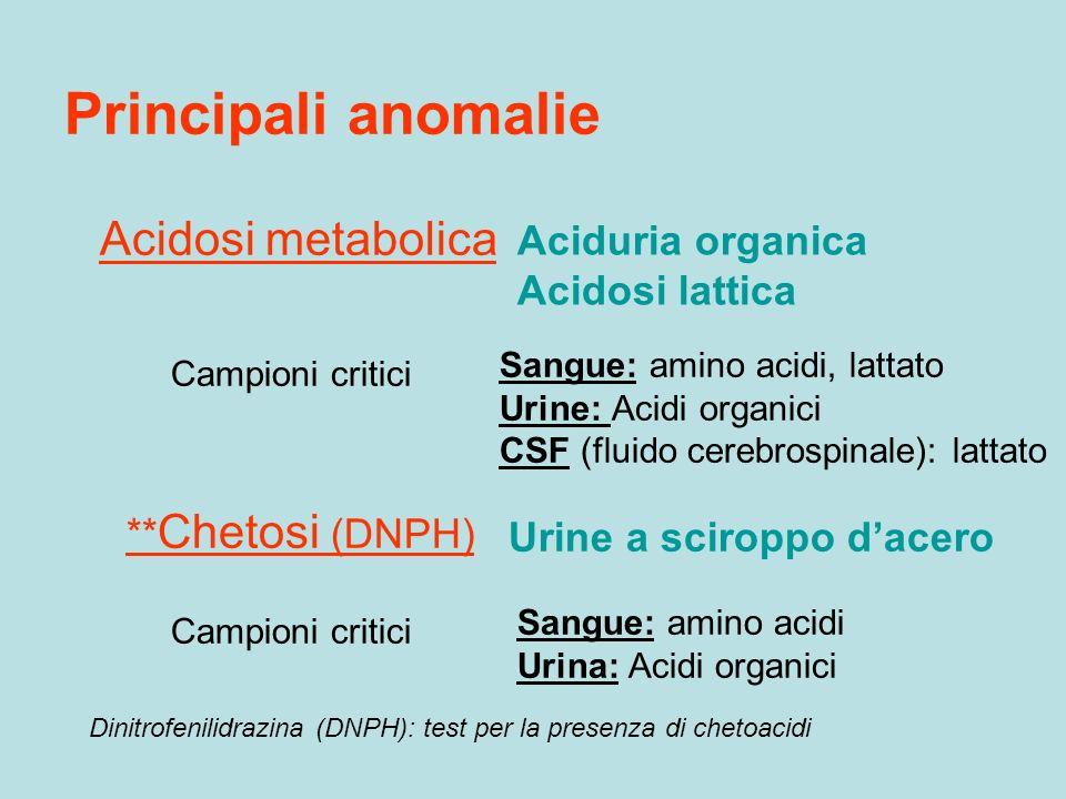 Principali anomalie ** Chetosi (DNPH) Urine a sciroppo dacero Sangue: amino acidi Urina: Acidi organici Campioni critici Acidosi metabolica Campioni c