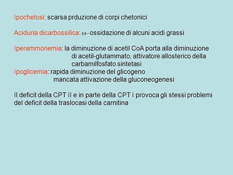 Ipochetosi: scarsa prduzione di corpi chetonici Aciduria dicarbossilica: ossidazione di alcuni acidi grassi Iperammonemia: la diminuzione di acetil Co