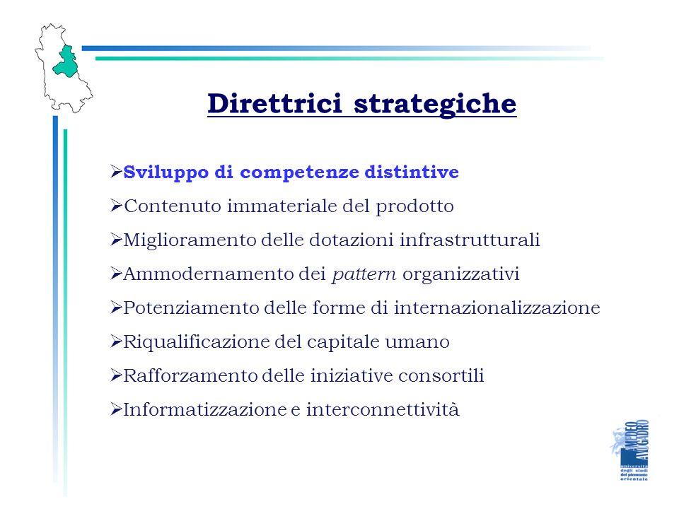 Direttrici strategiche Sviluppo di competenze distintive Contenuto immateriale del prodotto Ammodernamento dei pattern organizzativi Miglioramento delle dotazioni infrastrutturali Potenziamento delle forme di internazionalizzazione Riqualificazione del capitale umano Rafforzamento delle iniziative consortili Informatizzazione e interconnettività