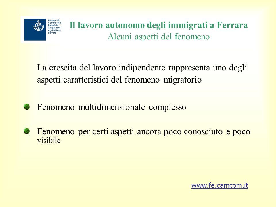 Il lavoro autonomo degli immigrati a Ferrara Per fasce di età Tra gli extra-comunitari con cariche in imprese ferraresi il 16,1% ha unetà inferiore ai 29 anni il 63,8% ha unetà compresa tra i 30 e i 49 anni il 18,1% ha unetà tra i 50 e i 69 anni www.fe.camcom.it