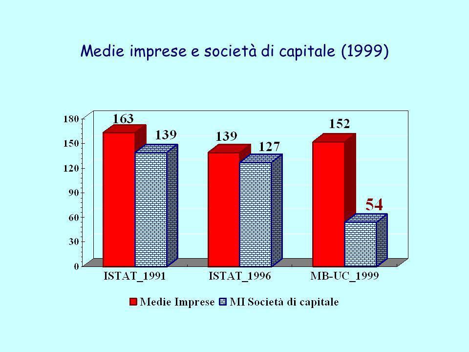 Medie imprese e società di capitale (1999)