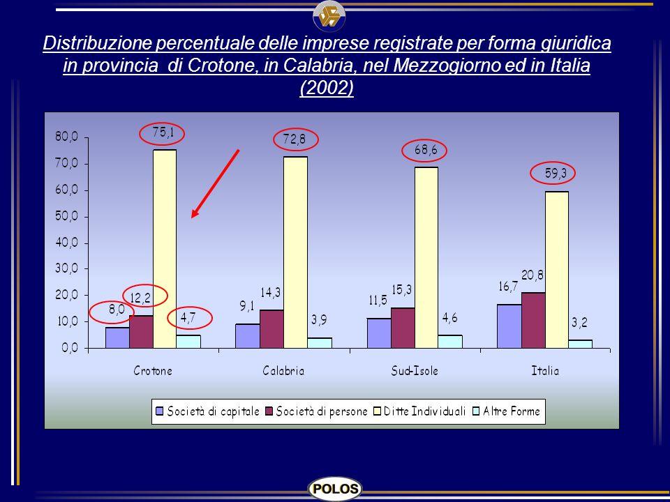 Distribuzione percentuale delle imprese registrate per forma giuridica in provincia di Crotone, in Calabria, nel Mezzogiorno ed in Italia (2002)