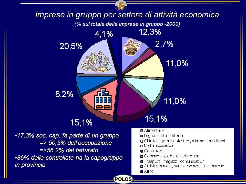 Imprese in gruppo per settore di attività economica (% sul totale delle imprese in gruppo -2000) 17,3% soc. cap. fa parte di un gruppo => 50,5% delloc