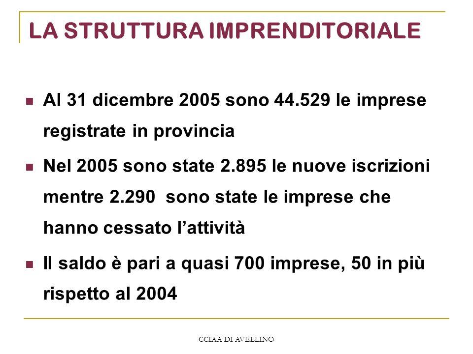 CCIAA DI AVELLINO LA STRUTTURA IMPRENDITORIALE Al 31 dicembre 2005 sono 44.529 le imprese registrate in provincia Nel 2005 sono state 2.895 le nuove i