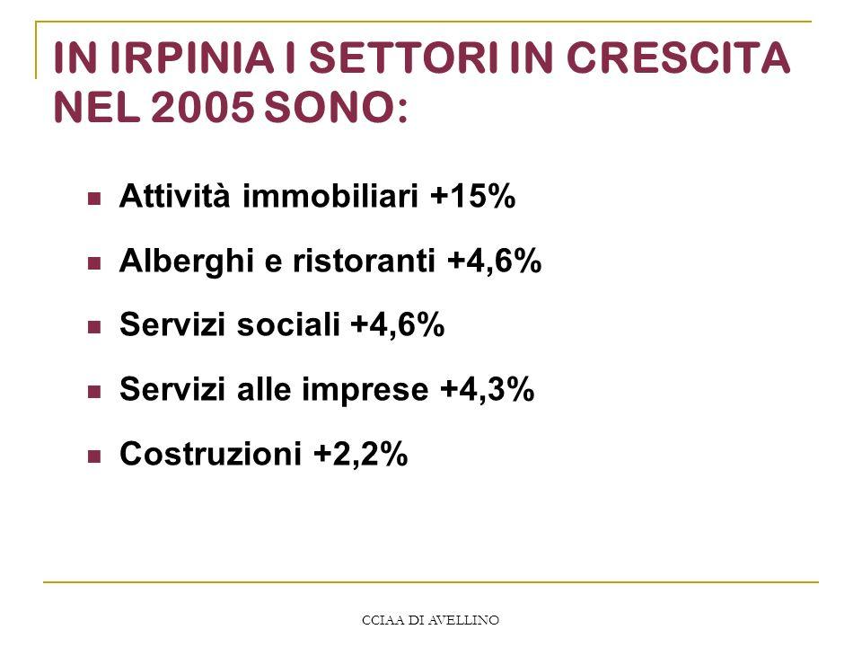 CCIAA DI AVELLINO IN IRPINIA I SETTORI IN CRESCITA NEL 2005 SONO: Attività immobiliari +15% Alberghi e ristoranti +4,6% Servizi sociali +4,6% Servizi