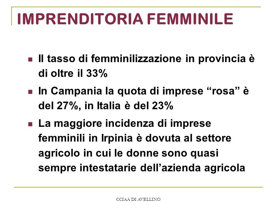 CCIAA DI AVELLINO IMPRENDITORIA FEMMINILE Il tasso di femminilizzazione in provincia è di oltre il 33% In Campania la quota di imprese rosa è del 27%, in Italia è del 23% La maggiore incidenza di imprese femminili in Irpinia è dovuta al settore agricolo in cui le donne sono quasi sempre intestatarie dellazienda agricola