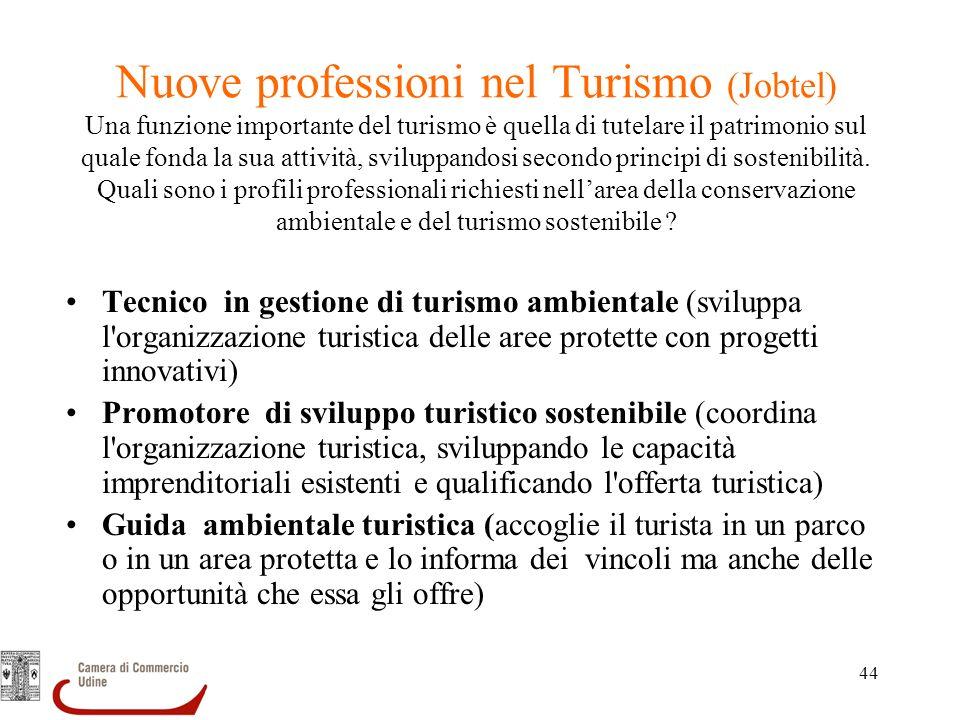 44 Nuove professioni nel Turismo (Jobtel) Una funzione importante del turismo è quella di tutelare il patrimonio sul quale fonda la sua attività, svil