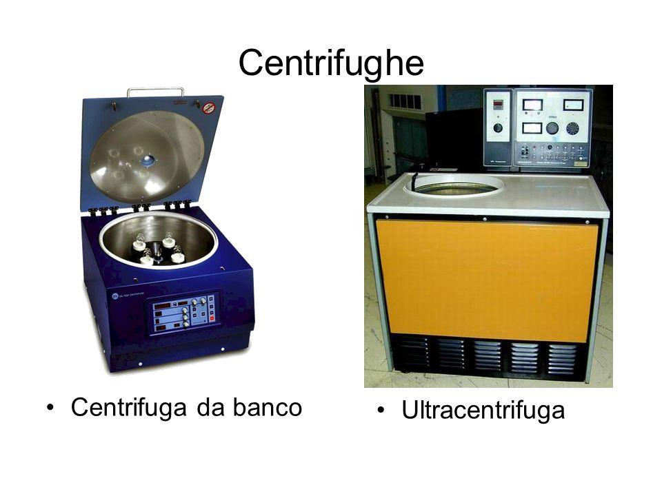 Centrifughe Centrifuga da banco Ultracentrifuga