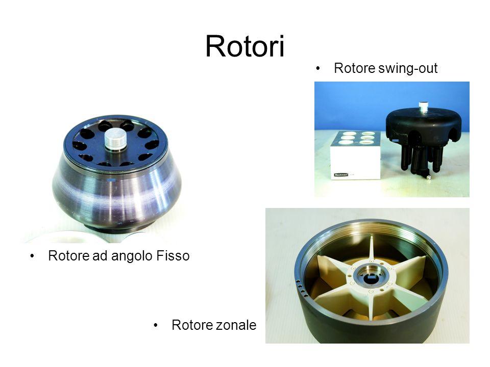 Rotori Rotore ad angolo Fisso Rotore swing-out Rotore zonale