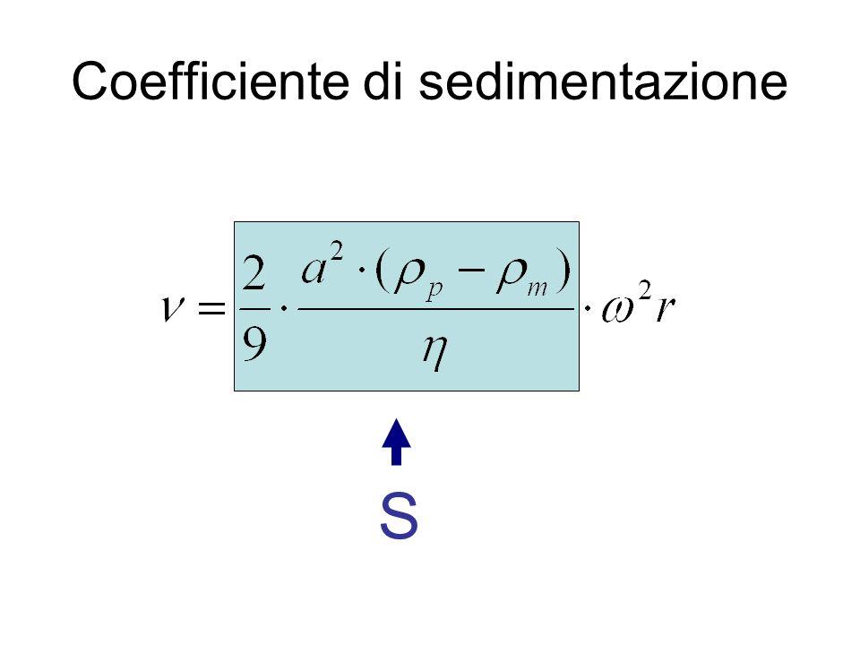 Centrifugazione isopicnica con gradiente Allinizio le particelle sono disperse nel mezzo (A), durante la centrifugazione si forma il gradiente, alla fine (Z) le particelle galleggiano alla densità del gradiente uguale alla loro.
