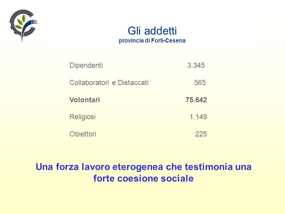 Gli addetti provincia di Forlì-Cesena Dipendenti 3.345 Collaboratori e Distaccati 565 Volontari 75.642 Religiosi 1.149 Obiettori 225 Una forza lavoro eterogenea che testimonia una forte coesione sociale