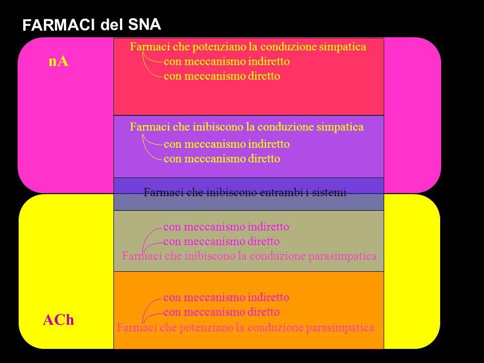 ACh nA FARMACI del SNA Farmaci che potenziano la conduzione simpatica Farmaci che inibiscono la conduzione simpatica Farmaci che inibiscono la conduzione parasimpatica Farmaci che inibiscono entrambi i sistemi Farmaci che potenziano la conduzione parasimpatica con meccanismo indiretto con meccanismo diretto con meccanismo indiretto con meccanismo diretto con meccanismo indiretto con meccanismo diretto con meccanismo indiretto con meccanismo diretto