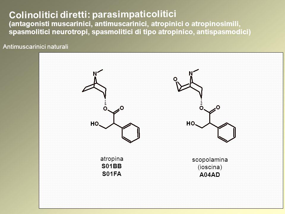 Antimuscarinici naturali Colinolitici diretti: parasimpaticolitici atropina S01BB S01FA scopolamina (ioscina) A04AD (antagonisti muscarinici, antimuscarinici, atropinici o atropinosimili, spasmolitici neurotropi, spasmolitici di tipo atropinico, antispasmodici)